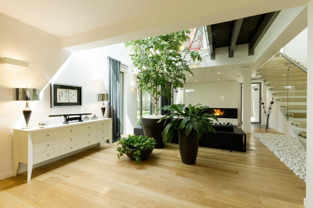 Una claraboya para cada necesidad Spacious staircase with plants and skylight